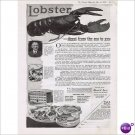 Frank Davis Co Gloucester lobster 1919 full page ad E142