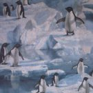 Arctic Penguin Fabric FQ