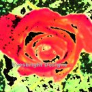 Rose - Digital Abstract Art - 18x12 Poster