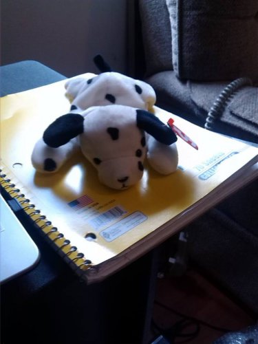 TY Stuffed Animal Black spotted puppy