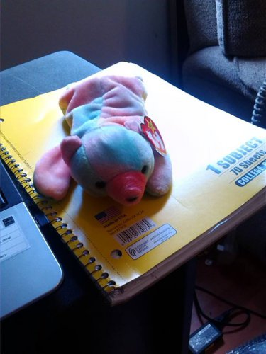 Ty Stuffed Animal Multicolor Bear