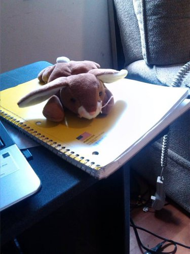 Ty Stuffed Animal Brown Bunny