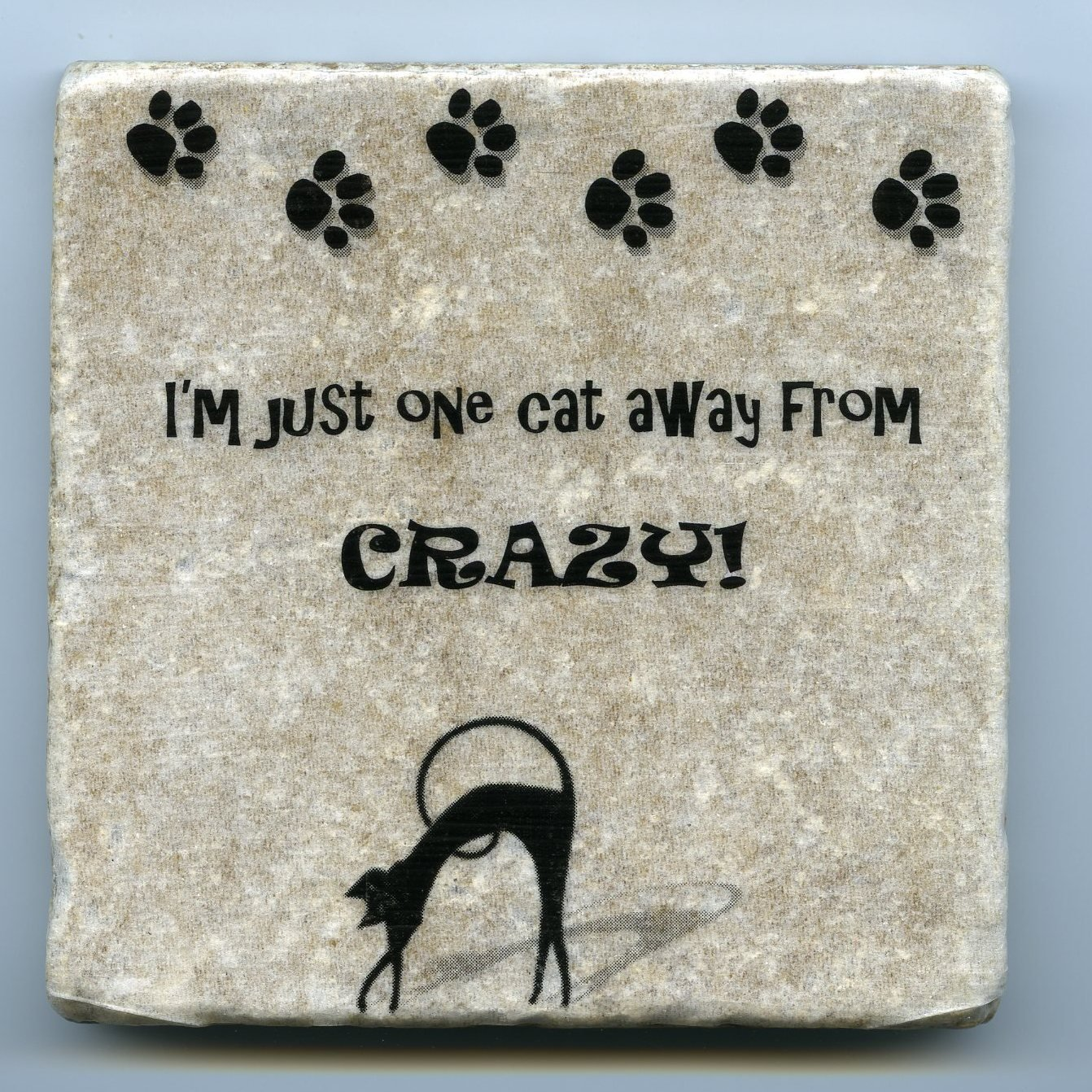 I'm Just One Cat Away From Crazy Tumbled Tile Natural Stone Coaster Wall Art