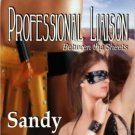 PROFESSIONAL LIAISON by Sandy Sullivan