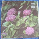 "Vintage  Soviet Russsian Ussr K. Dzaparidze  7""    LP"