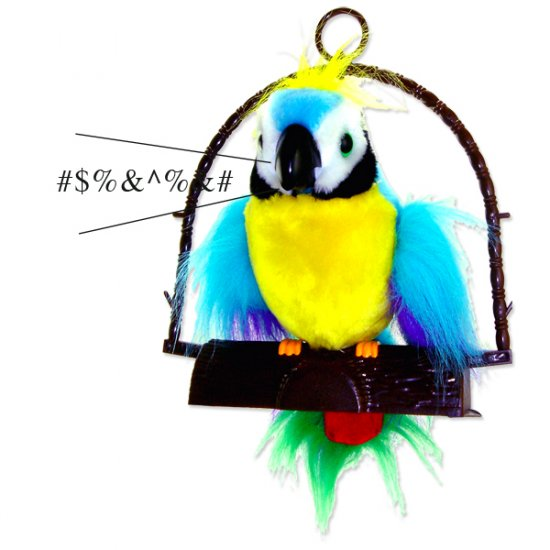 Loud-Funny-Wild Polly The Insulting Parrot