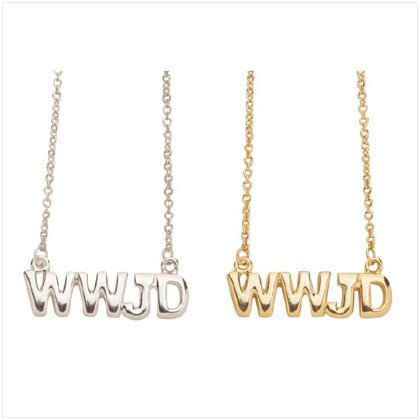 1 Dz WWJD Pendant And Chain