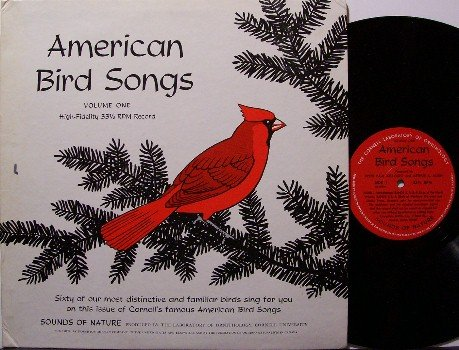 American Bird Songs - Vinyl LP Record - Actual Bird Animal Sounds - Odd Unusual