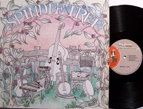 Spindletree - Self Titled - Vinyl LP Record - Spindle Tree - Tennessee Irish Folk