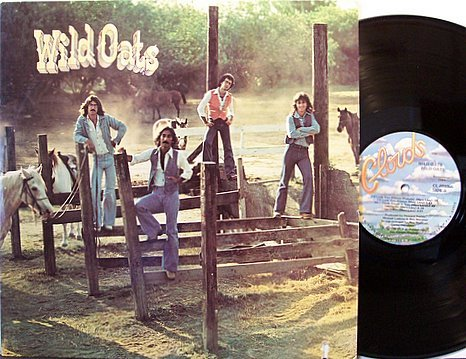 Wild Oats - Self Titled - Vinyl LP Record - Florida Pop Rock