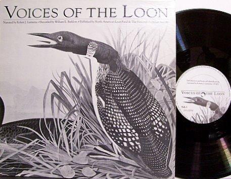 Voices Of The Loon - Vinyl LP Record - Water Fowl Birds Audubon - Odd Unusual Weird