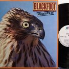 Blackfoot - Marauder - Germany Pressing - Vinyl LP Record - Rock