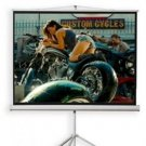 """72"""" Projection Screen with Standing Shell"""