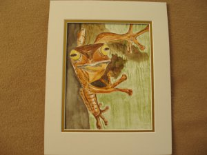 Frog on tree Watercolor