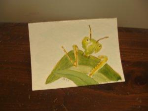 Hand Painted blank greeting card praying mantis watercolor