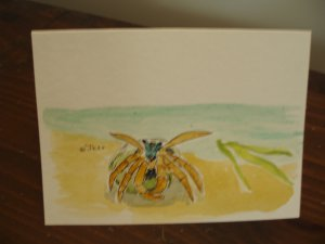 Blank Card with watercolor hermit crab
