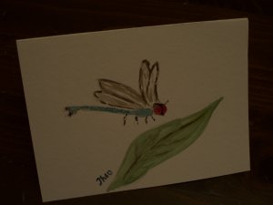 Greeting Blank Card with dragonfly