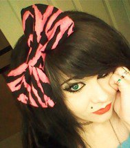 Small Fashionista Hot Pink and Black Zebra Print Scene Hair Bow w/snap clip