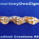 Beach Seashells French Style Barrette #267 Uniqie Hair Shirt Scarf Accessories