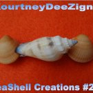 Artisan Seashells French Barrette #261 Handmade Hair, Shirt or Scarf Clip
