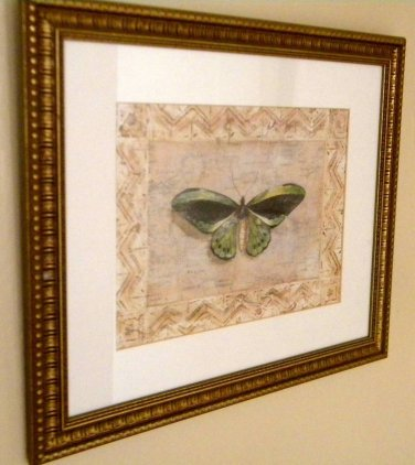 Large Framed Butterfly Print