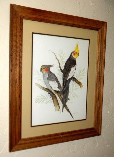 Beautiful Bird Print in Solid Oak Frame
