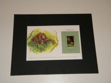 Matted Print and Stamp - Orangutan - World Wildlife Fund