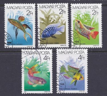 Stamps - Hungary 1987  - Tropical Fish Stamp Set (5)
