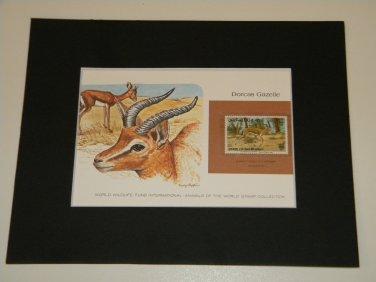 Matted Print and Stamp - Dorcas Gazelle - World Wildlife Fund