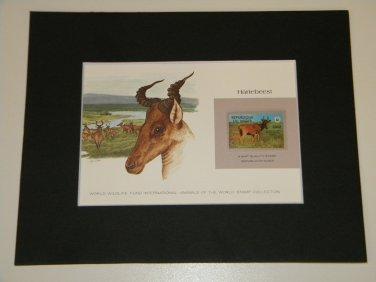 Matted Print and Stamp - Hartebeest - World Wildlife Fund