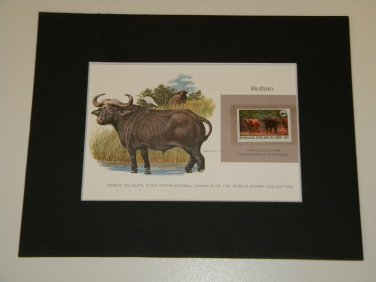 Matted Print and Stamp - Buffalo - World Wildlife Fund