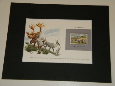 Matted Print and Stamp - Caribou - World Wildlife Fund