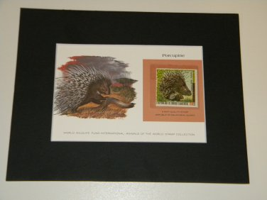 Matted Print and Stamp - Porcupine - World Wildlife Fund