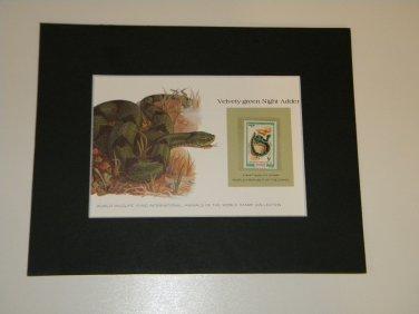 Matted Print and Stamp - Velvety- Green Night Adder - World Wildlife Fund