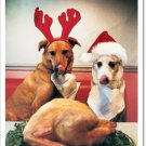 Dogs and Turkey Holiday Card