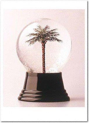 Palm Tree Snowdome Holiday Card