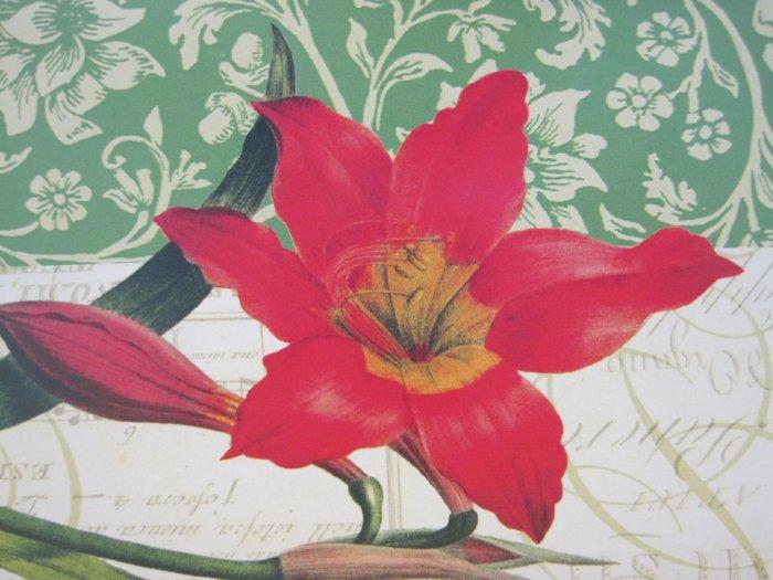 Poinsettia Print Blank Card