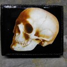 Hand Decorated Wallet, Skull Print