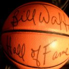 Bill Walton Signed Auto HOF Basketball Ball PSA / DNA COA