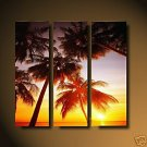 Moder sunset glow oil painting on Canvas setting sun464