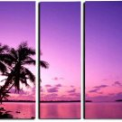 Modern oil painting on Canvas sunset glow painting set 339