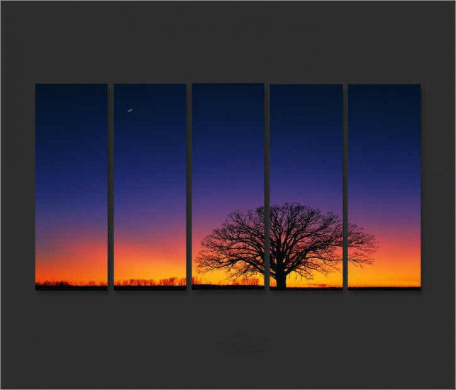 Modern Contemporary oil paintings on Canvas sunset glow painting set696
