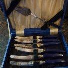 VINTAGE SILVERPLATED BREAKFAST 6 KNIFE & SERVING FORK COBALT HARD PLASTIC HANDLE
