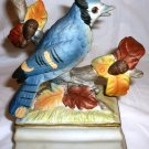 VINTAGE PORCELAIN BISQUE BLUEJAY FIGURINE MUSIC BOX (not playing) by TOWLE