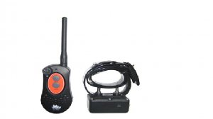 DT Systems H2O PLUS 1 Dog System 1810 (FREE SHIPPING)