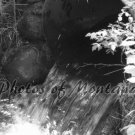 5x7 Photo ~ Black & White #003 Irrigation in Montana