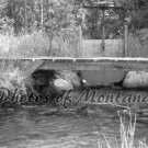 5x7 Photo ~ Black & White #002 Irrigation and Bridge