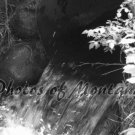 4x6 Photo ~ Black & White #003 Irrigation in Montana