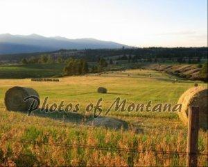 8x10 Photo ~ Scenic #002 Hayfield in Montana