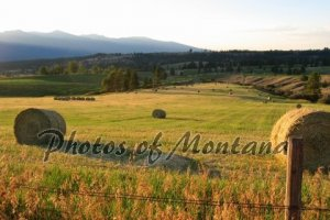 4x6 Photo ~ Scenic #002 Hayfield in Montana